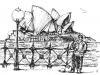 web-copyrighted-sydney-opera-house.jpg