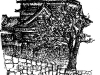 kumamoto-castle.jpg